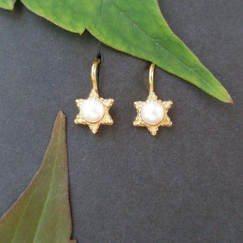Ohrrhänger Stern Gold
