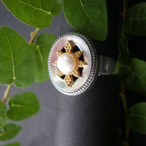 Trachten Ring Stern